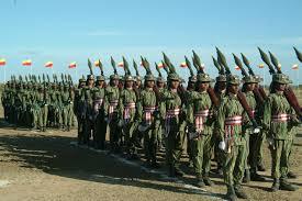 LTTE force1
