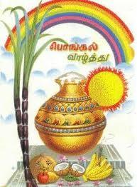பொங்கல் திருநாள்- திருக்குறள் பாவலன் தமிழ்மகிழ்நன்