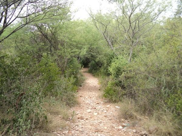 hillway01