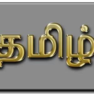 """காலந்தோறும் """"தமிழ்"""" –  சொல்லாட்சி"""