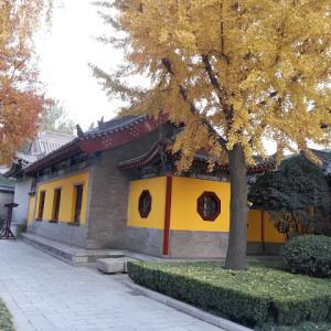 42big-wild-goose-pagoda-07