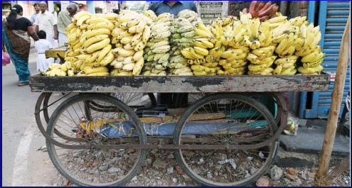 banana-cartshop