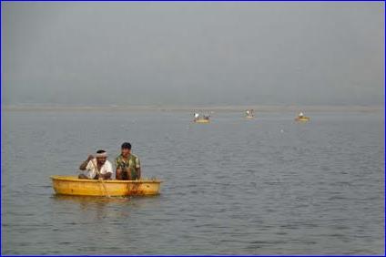 65manjalaaru-fishselling