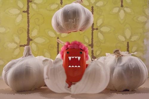 Alliumphobia01