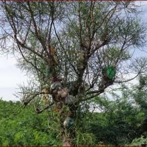 தேவதானப்பட்டிப் பகுதியில் மறைந்து வரும் தொப்புள் கொடி உறவுகள்