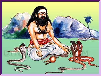 pambattichthar02