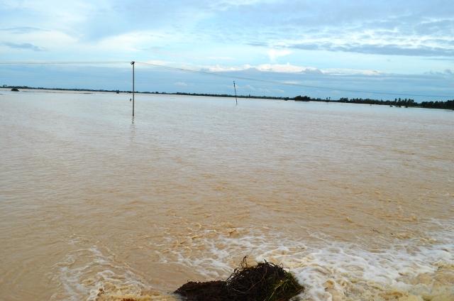 கடலூர் வெள்ளம்01 : cudalore_flood01