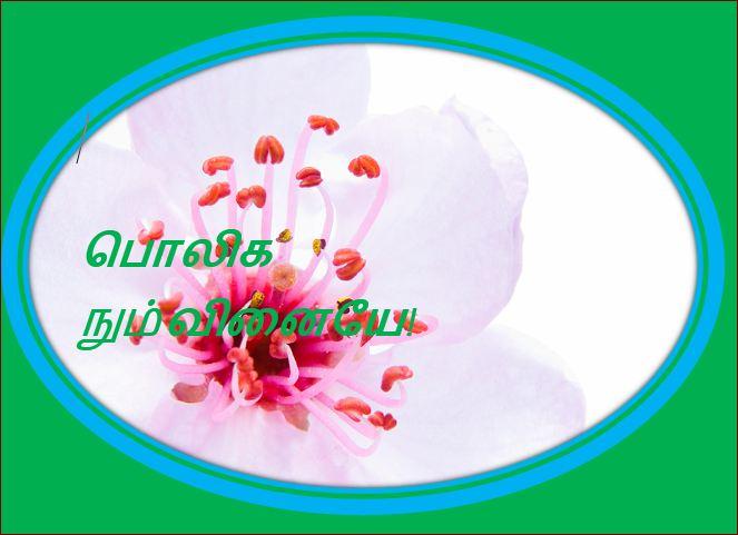 தலைப்பு-பொலிக நும் வினையே : thalaippu_poliganumvinaiye02