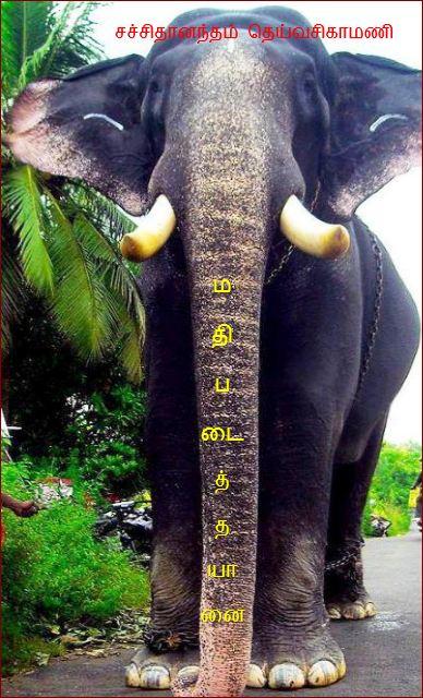 தலைப்பு-மதிபடைத்தயானை : thalaippu_mathipadaitha_yaanai_sachithananthamdeyvasikamani02