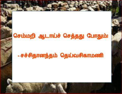 தலைப்பு-செம்மறியாடு :thalaippu_semmariaadu