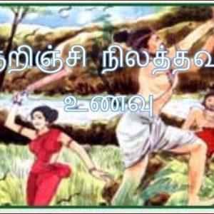 குறிஞ்சி நிலத்தவர் உணவு – மா.இராசமாணிக்கம்