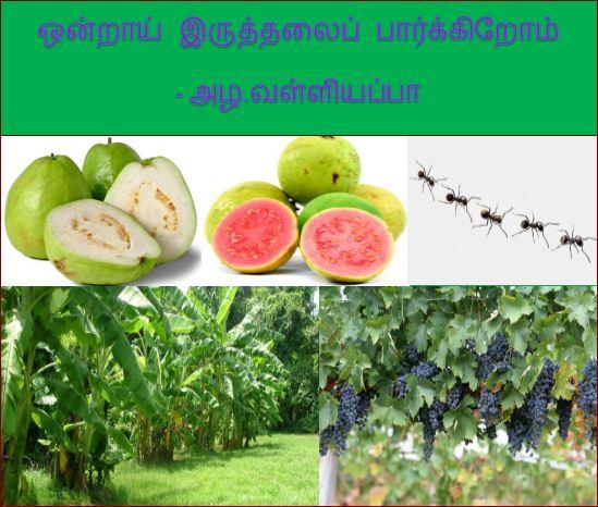 தலைப்பு- ஒன்றாய்ப்பார்க்கிறோம்-அழ.வள்ளியப்பா : thalaippu_ondraaypaarkkiroam_azha.valliyappa