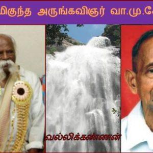 ஆற்றல் மிகுந்த அருங்கவிஞர் வா.மு.சேதுராமன் 36 – வல்லிக்கண்ணன்