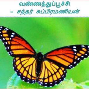 வண்ணத்துப்பூச்சி – சந்தர் சுப்பிரமணியன்