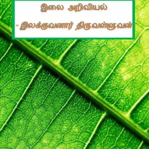 image-32687