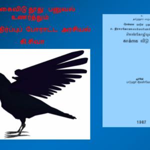 image-33120