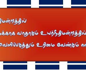 image-33842