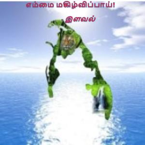 image-34647