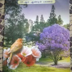 image-37049